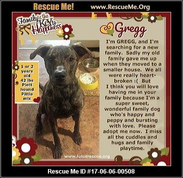 Aggressive Dog Rescue Pennsylvania