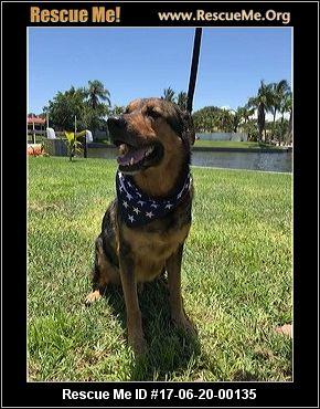 Best Friend Dog Rescue Tallahassee