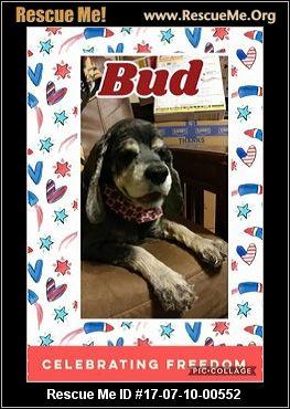 Tulsa County Dog Rescue