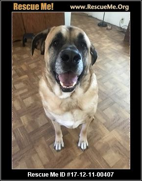 Deaf Dog Rescue Oregon