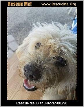 Aiken County Dog Rescue