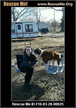 Dog Rescue Groups Columbia Sc