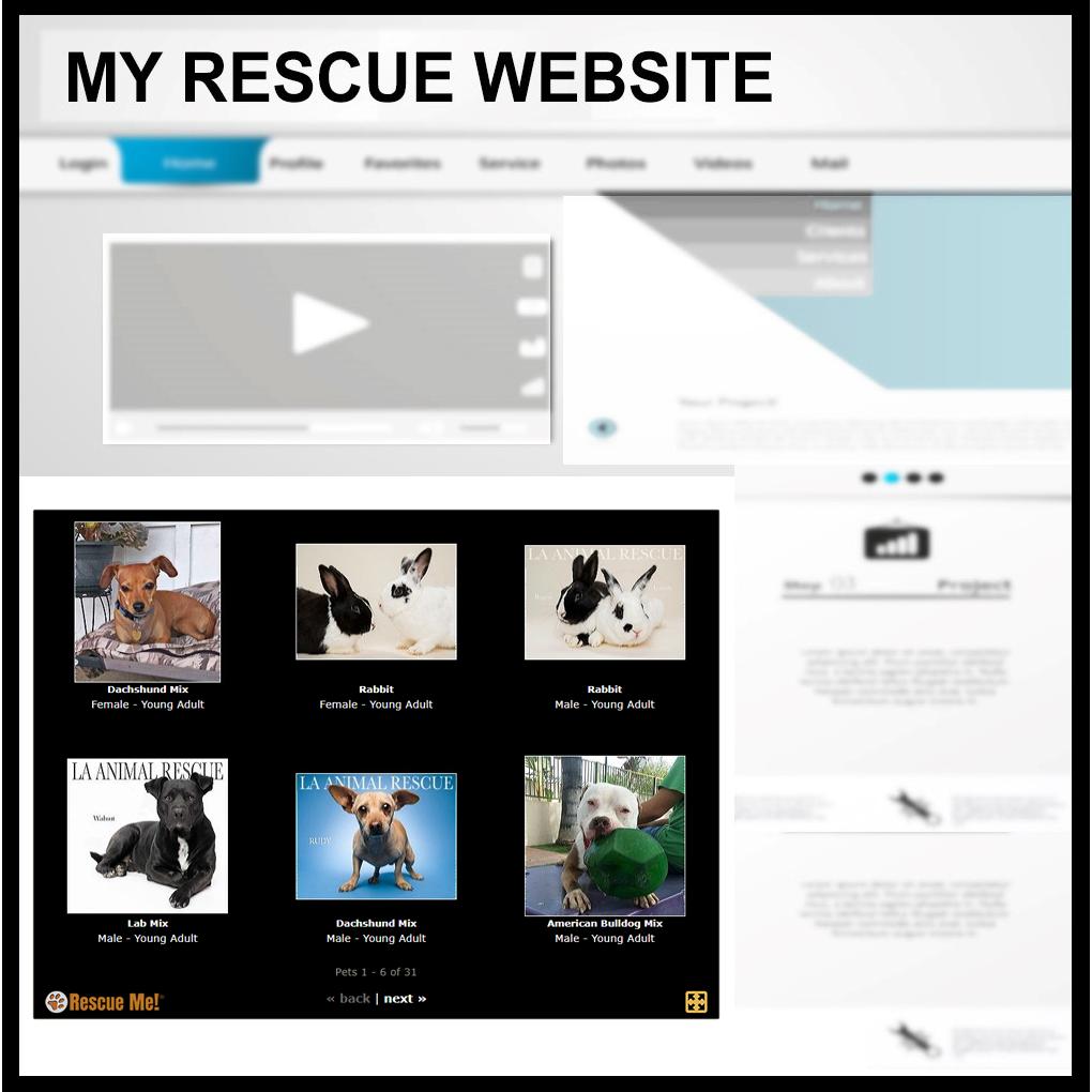 Widgets — Embed Posts 🐾 Rescue Me!  Slideshow Widget For Website