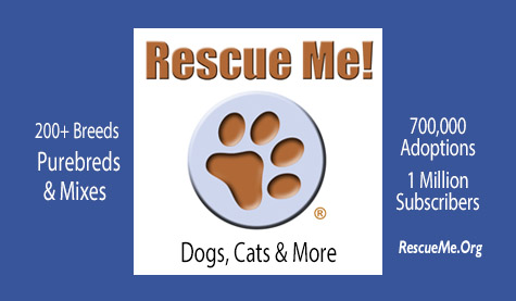 www.rescueme.org