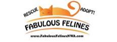 Fabulous Felines NWA