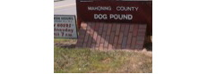 Mahoning County Dog Pound, Youngstown Ohio