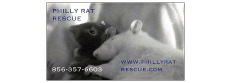 PHILLY RAT RESCUE