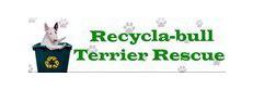 Recycla-Bull Terrier Rescue