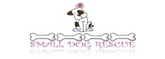 Arizona Small Dog Rescue