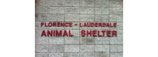Florence Alabama Shelter