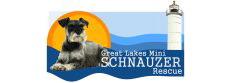 Great Lakes Mini Schnauzer Rescue