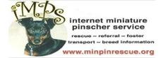 IMPS - Internet Miniature Pinscher Service