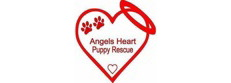 Angels Heart Puppy Rescue